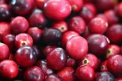 250px-Cranberries20101210