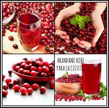 Arándano rojo, otro fruto para mejorar nuestra salud