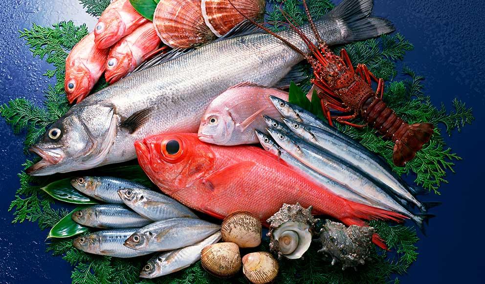 5 Especies De Pescado Que Contienen Omega 3